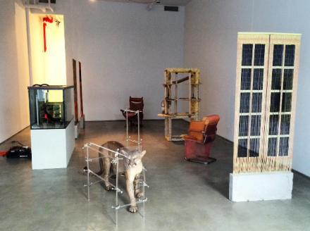 Dolores (Installation View), via Art Observed
