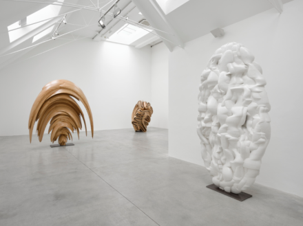 Tony Cragg (Installation View) all images courtesy of Lisson Gallery