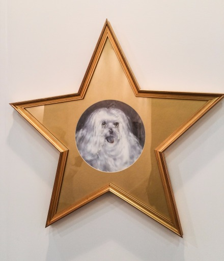 Cardi Gallery Francesco Vezzoli Suddenly Last Summer walks of fame Elizabeth Taylor's dog Sugar