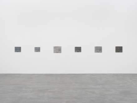 Vija Celmins, A Painting in Six Parts (1986-87/2012-2016)