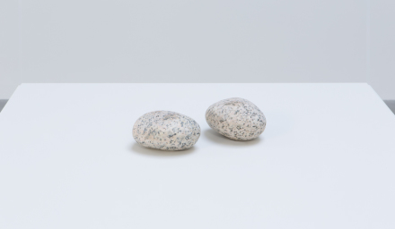 Vija Celmins, Two Stones (1977/2014-2016)