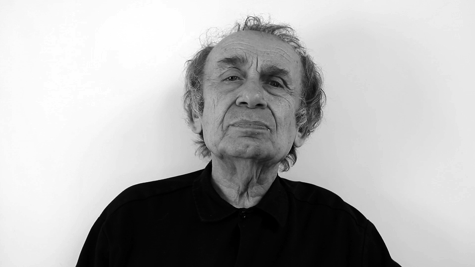 Vito Acconci Ao Art Observed