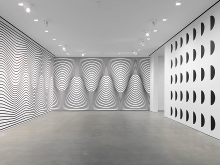 Claudia Comte, The Morphing Scallops (Installation View), via Gladstone