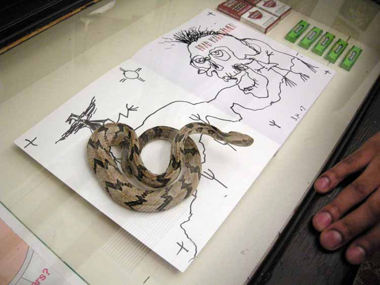 Cool Drawings Of Skulls And Snakes