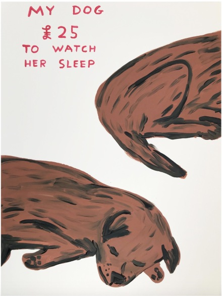 David Shrigley, Untitled (My Dog : £25 to Watch Her Sleep) (2019),via Anton Kern