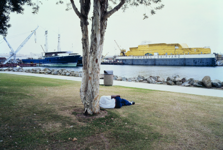 Allan Sekula, Man sleeping under a eucalyptus tree, Embarcadero park, (SD) from Fish Story (1989-1995), via Marian Goodman