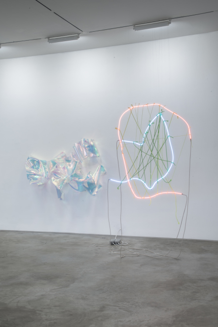 Berta Fischer (Installation View), via James Fuentes