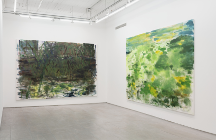 Trevor Shimizu, Landscapes (Installation View), via 47 Canal