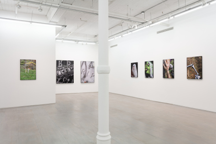 Michele Abeles, October (Installation View), via 47 Canal